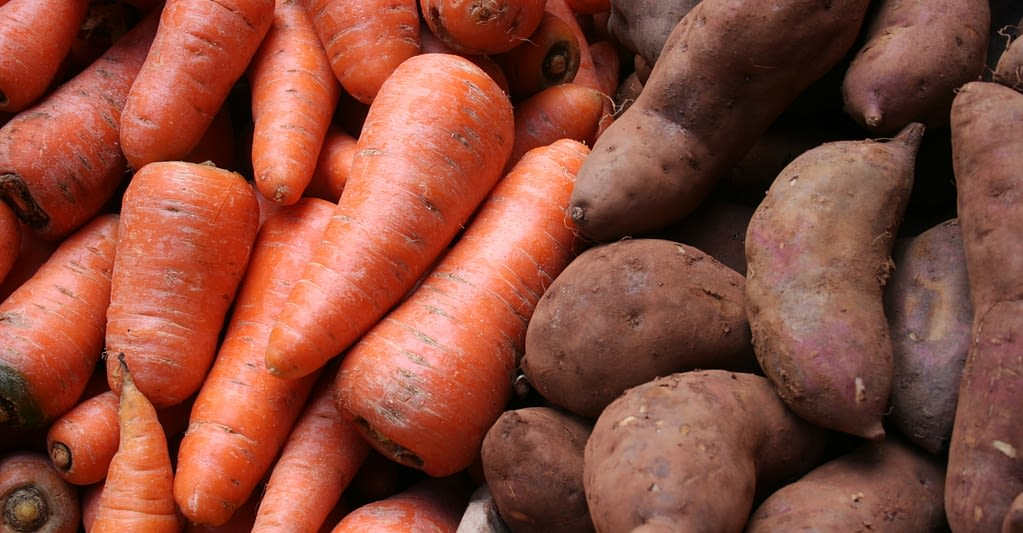 Carrots Sweet Potatoes